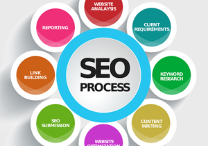 search-engine-optimization-seo-auckland-website-google-ranking